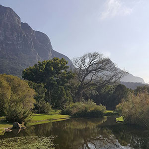south-africa-destinations